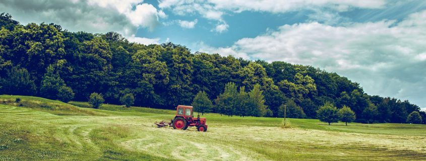 Tractor working in field