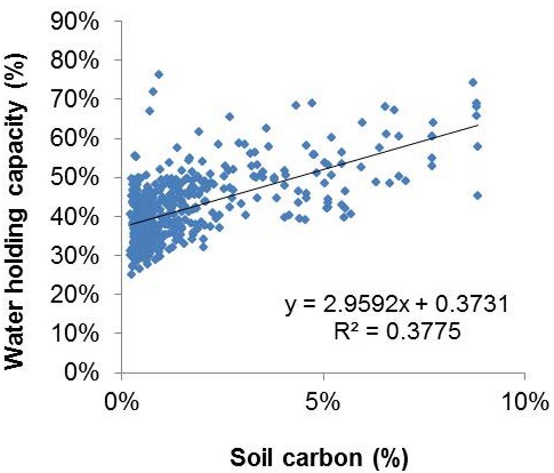 Carbon WHC graph