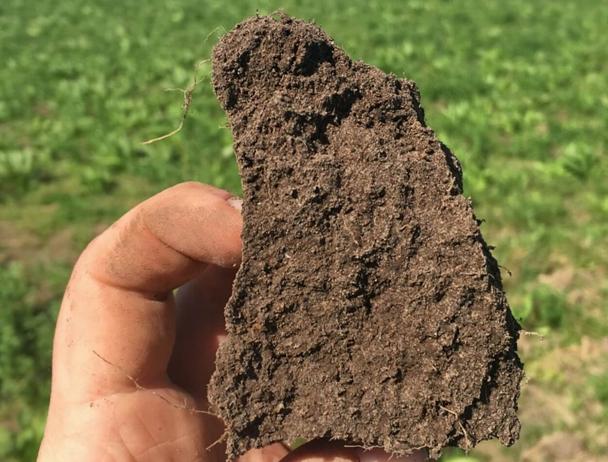 Soil aggregate - good