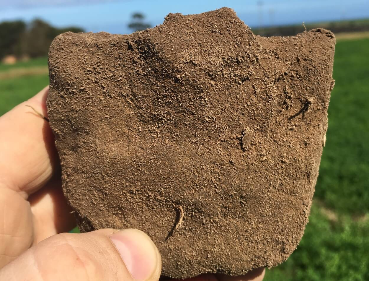 Soil aggregate - poor