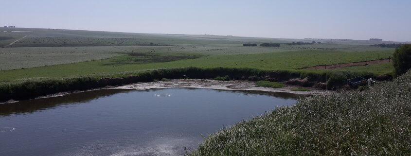 Effluent pond
